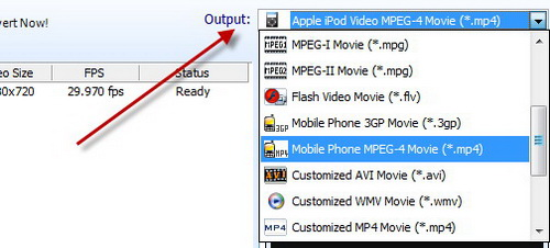 Free Video Converter Screenshot 2